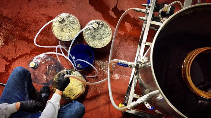 Beer making pilot system